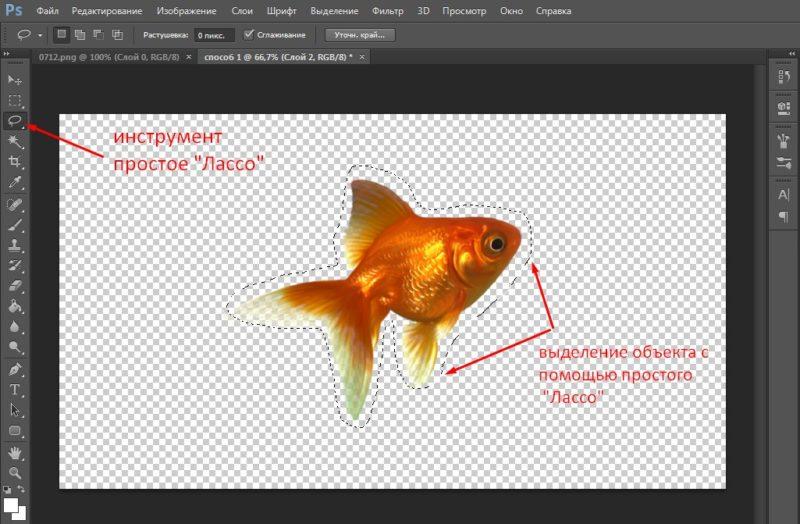 как вырезать объект в фотошопе с помощью простого лассо
