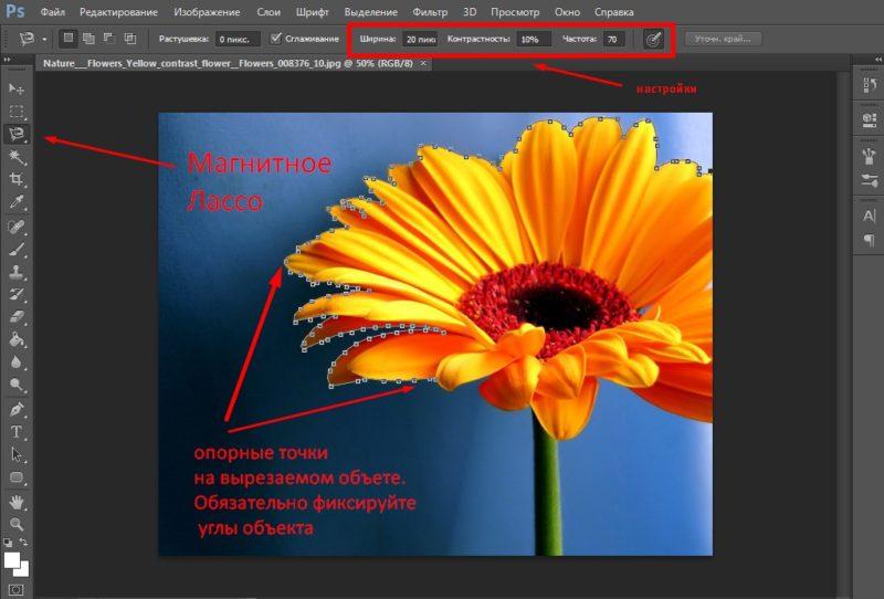 как вырезать объект в фотошопе с помощью магнитного лассо