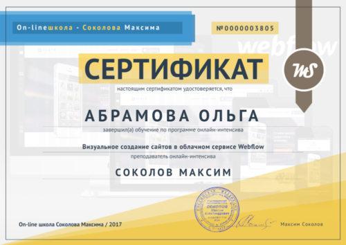 Веб-разработка в Webflow Максима Соколова