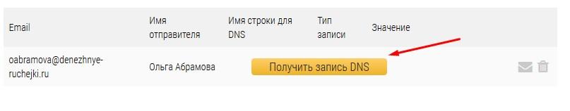 получить запись DNS