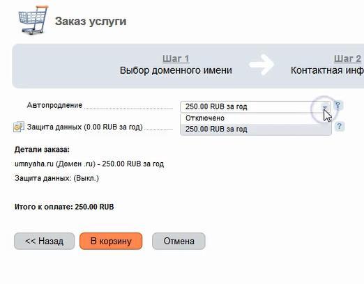 оплата домена